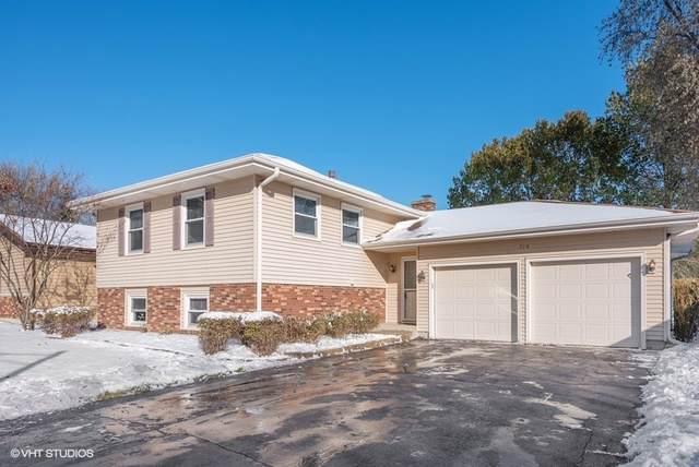 710 Ash Street, Algonquin, IL 60102 (MLS #10567708) :: Ryan Dallas Real Estate