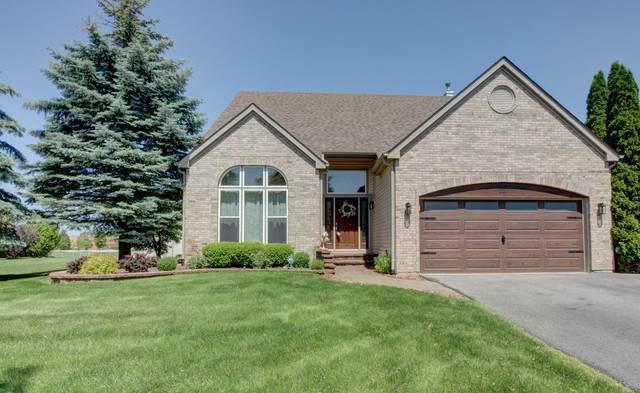 227 Butler Drive, Bartlett, IL 60103 (MLS #10568170) :: Angela Walker Homes Real Estate Group
