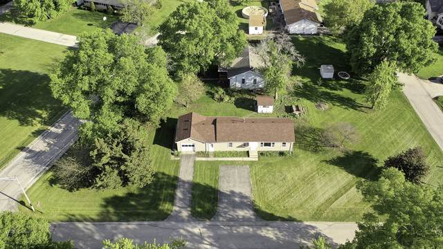 25211 W Story Street, Channahon, IL 60410 (MLS #10568486) :: Property Consultants Realty