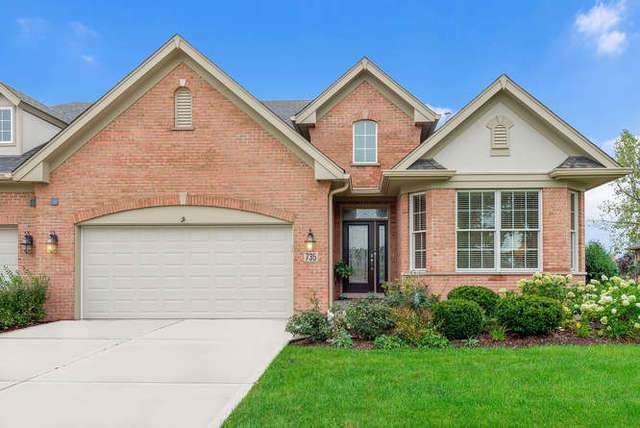 735 Woodglen Lane, Lemont, IL 60439 (MLS #10568583) :: John Lyons Real Estate