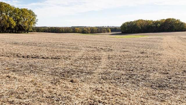 450 Farewell Bridge Road, Ridott, IL 61067 (MLS #10568624) :: Property Consultants Realty