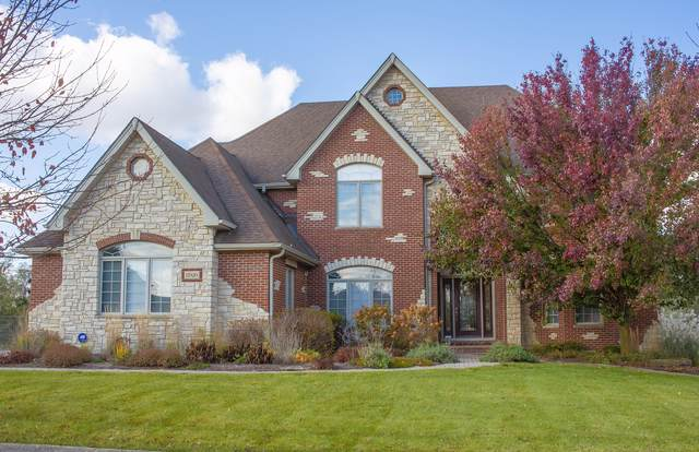 17020 Windsor Court, Homer Glen, IL 60491 (MLS #10568963) :: Property Consultants Realty
