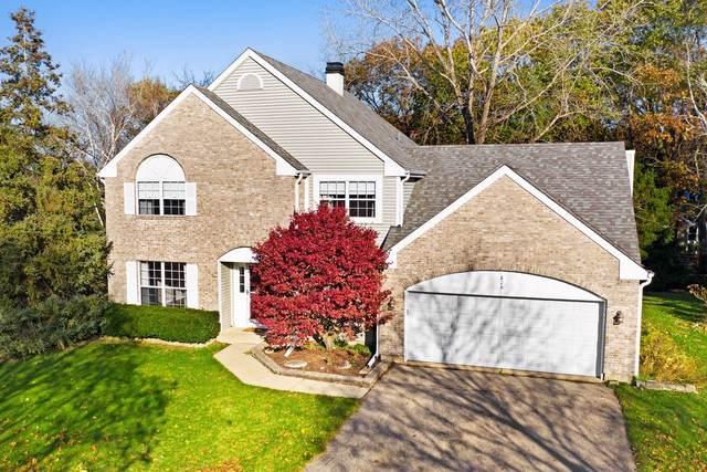 828 Honey Locust Court, Bartlett, IL 60103 (MLS #10569099) :: Angela Walker Homes Real Estate Group