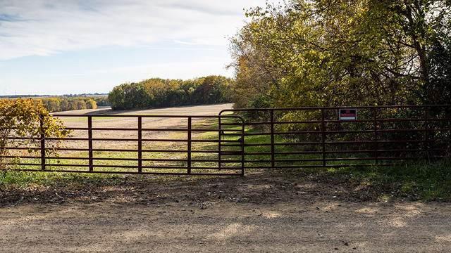 400 Farewell Bridge Road, Ridott, IL 61067 (MLS #10569160) :: Property Consultants Realty