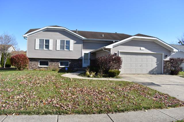 2375 Chestnut Lane, Morris, IL 60450 (MLS #10569293) :: Ryan Dallas Real Estate