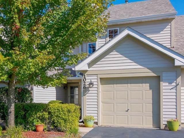 1026 Horizon Ridge, Lake In The Hills, IL 60156 (MLS #10569301) :: Ryan Dallas Real Estate