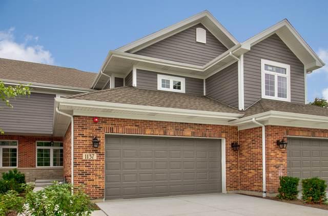 1137 Crystal Avenue, Downers Grove, IL 60516 (MLS #10569385) :: Baz Realty Network   Keller Williams Elite