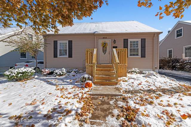 233 N Lincoln Avenue, Mundelein, IL 60060 (MLS #10569392) :: Property Consultants Realty