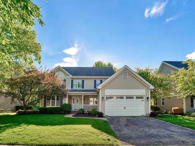 436 Chesterfield Lane, Vernon Hills, IL 60061 (MLS #10569396) :: Helen Oliveri Real Estate