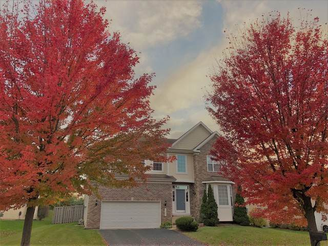 340 Lake Plumleigh Way, Algonquin, IL 60102 (MLS #10569425) :: Property Consultants Realty