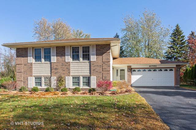 6701 Plymouth Road, Downers Grove, IL 60516 (MLS #10569713) :: Baz Realty Network   Keller Williams Elite
