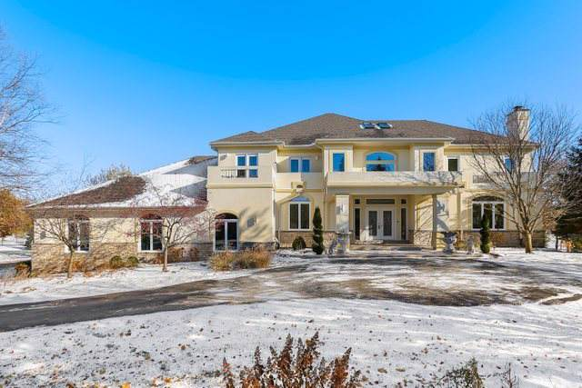 17935 Haas Road, Mokena, IL 60448 (MLS #10569938) :: The Wexler Group at Keller Williams Preferred Realty