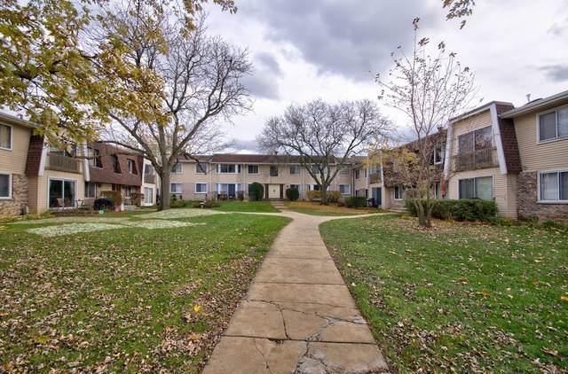 2932 Roberts Drive #8, Woodridge, IL 60517 (MLS #10570051) :: The Dena Furlow Team - Keller Williams Realty