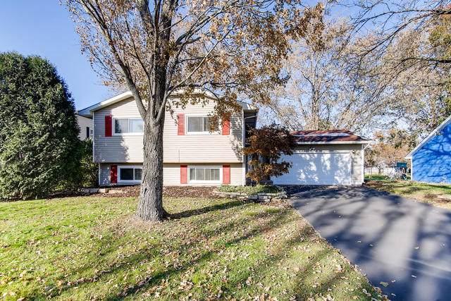 255 Ridgewood Drive, Woodstock, IL 60098 (MLS #10570114) :: The Dena Furlow Team - Keller Williams Realty