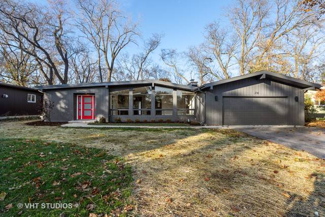 216 Shady Lane, Downers Grove, IL 60515 (MLS #10570426) :: Ani Real Estate