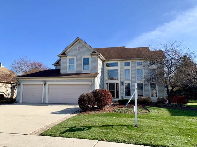 5205 Elliott Drive, Hoffman Estates, IL 60192 (MLS #10570573) :: Century 21 Affiliated