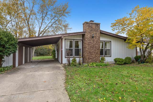 452 S Park Street, Westmont, IL 60559 (MLS #10570831) :: Ani Real Estate