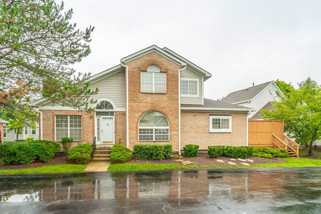 429 W Parkside Drive, Palatine, IL 60067 (MLS #10571008) :: The Wexler Group at Keller Williams Preferred Realty