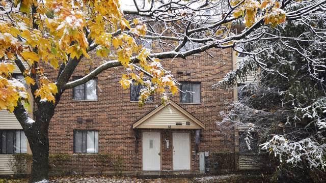 18 Parkside Court #15, Vernon Hills, IL 60061 (MLS #10571036) :: Helen Oliveri Real Estate