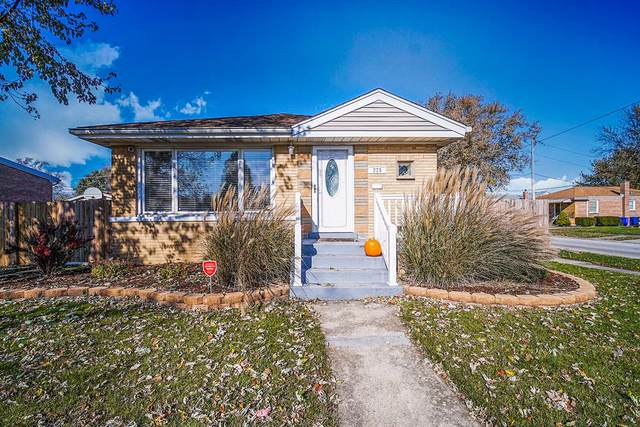 225 Chestnut Avenue, South Chicago Heights, IL 60411 (MLS #10571056) :: The Wexler Group at Keller Williams Preferred Realty