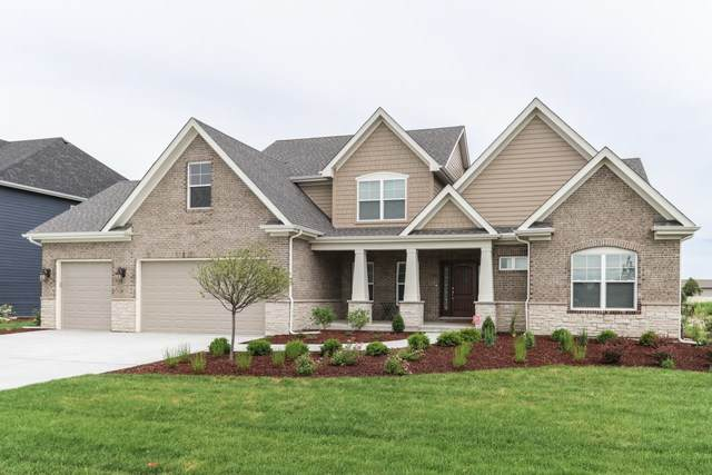 1107 Jefferson Drive, Bolingbrook, IL 60490 (MLS #10571073) :: Property Consultants Realty