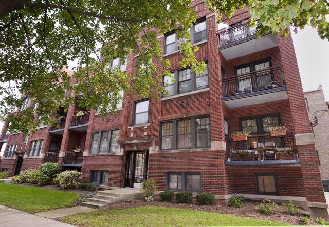 926 S Wesley Avenue #3, Oak Park, IL 60304 (MLS #10571127) :: The Dena Furlow Team - Keller Williams Realty
