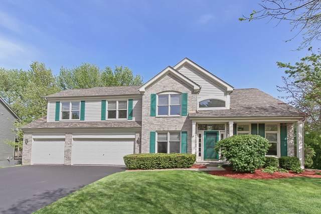 185 Salford Drive, Algonquin, IL 60102 (MLS #10571182) :: Ryan Dallas Real Estate