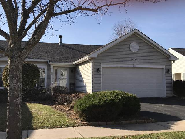 1325 Chestnut Circle, Yorkville, IL 60560 (MLS #10571744) :: The Dena Furlow Team - Keller Williams Realty
