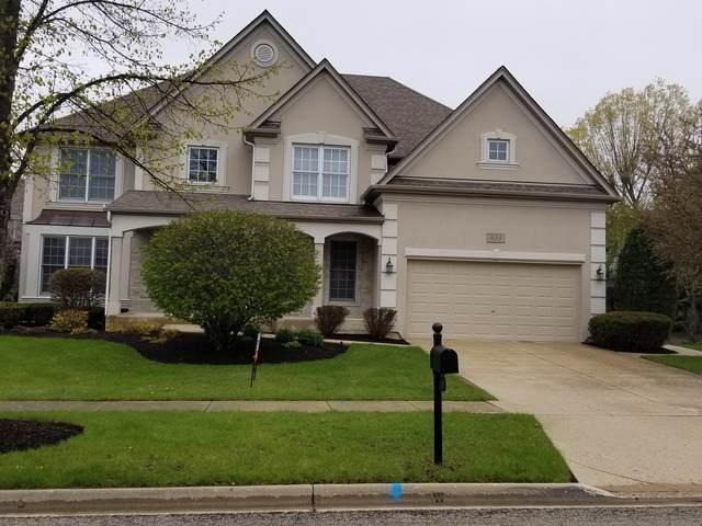 633 Waterside Drive, South Elgin, IL 60177 (MLS #10571748) :: The Wexler Group at Keller Williams Preferred Realty