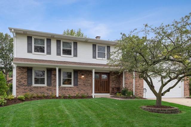 4250 Portage Lane, Hoffman Estates, IL 60192 (MLS #10571990) :: John Lyons Real Estate