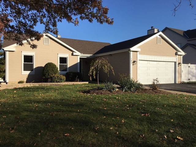 193 Timber Oaks Drive, North Aurora, IL 60542 (MLS #10572180) :: Century 21 Affiliated