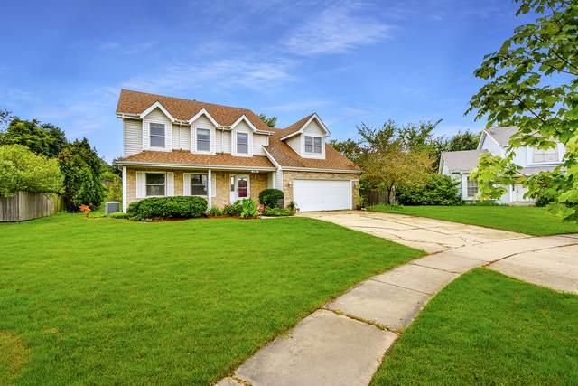 1185 Cedar Creek Drive, Lake Zurich, IL 60047 (MLS #10572266) :: Helen Oliveri Real Estate