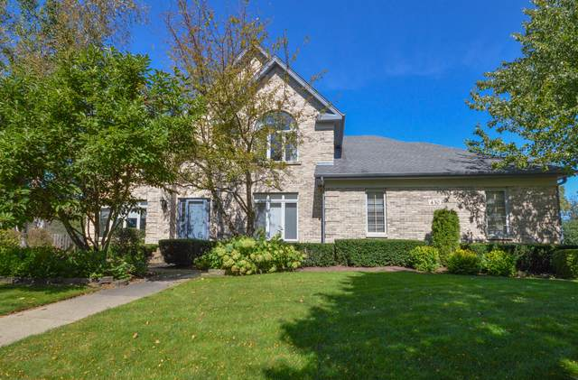 430 Blue Ash Drive, Buffalo Grove, IL 60089 (MLS #10572294) :: Helen Oliveri Real Estate