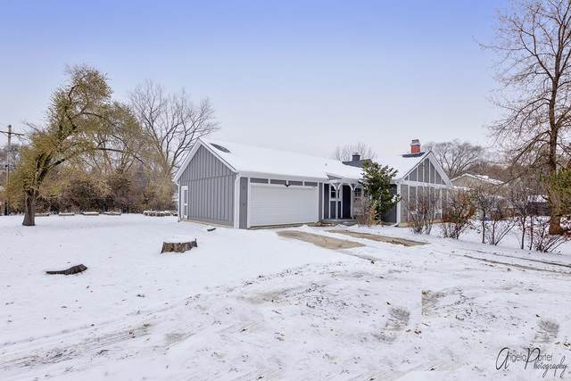 25280 W Bonner Road, Wauconda, IL 60084 (MLS #10572363) :: The Wexler Group at Keller Williams Preferred Realty