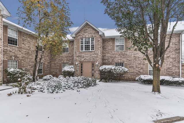1945 Matthew Court D, Elgin, IL 60123 (MLS #10572533) :: John Lyons Real Estate