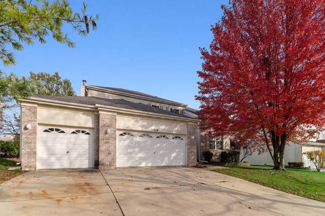 119 Buckskin Lane, Streamwood, IL 60107 (MLS #10572631) :: Touchstone Group