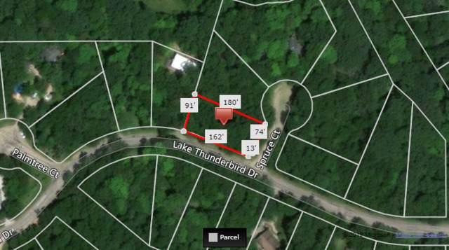 285 Lake Thunderbird Drive, Putnam, IL 61560 (MLS #10572663) :: Baz Realty Network   Keller Williams Elite