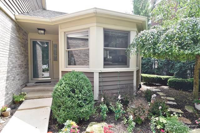 250 N Water Street #250, Batavia, IL 60510 (MLS #10572934) :: Ani Real Estate