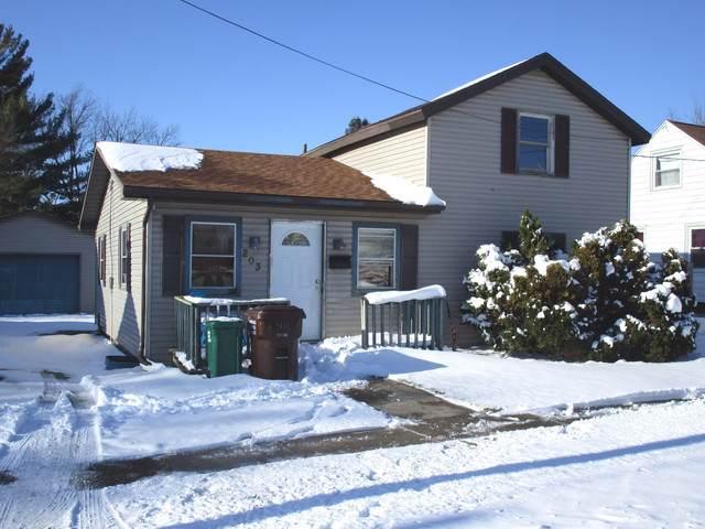 203 S Page Street, Harvard, IL 60033 (MLS #10573585) :: John Lyons Real Estate