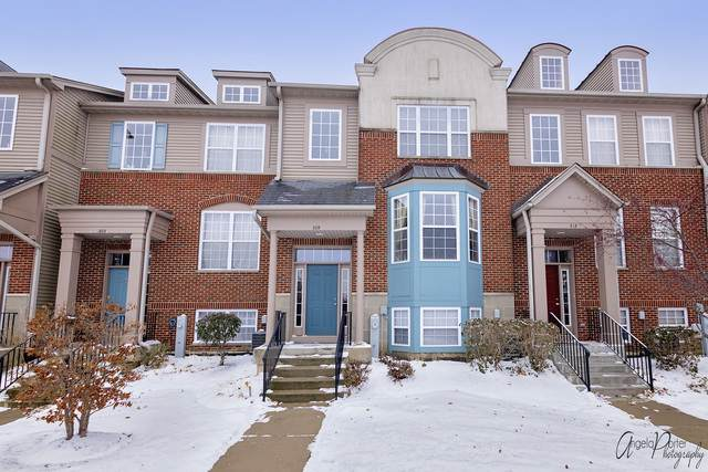 309 Station Park Circle, Grayslake, IL 60030 (MLS #10573649) :: Property Consultants Realty