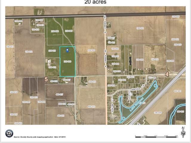 4750 Minooka Road E, Minooka, IL 60447 (MLS #10573671) :: Ani Real Estate