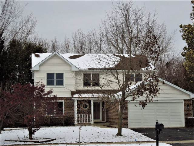 1686 Hidden Valley Drive, Bolingbrook, IL 60490 (MLS #10573804) :: The Wexler Group at Keller Williams Preferred Realty
