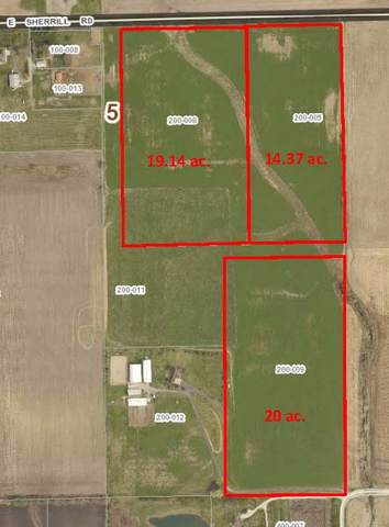 5000 Sherrill Road E, Minooka, IL 60447 (MLS #10573880) :: Ani Real Estate