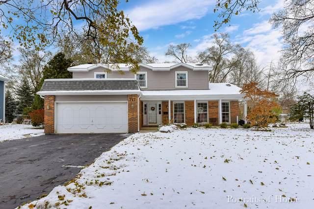 717 Pershing Avenue, Wheaton, IL 60189 (MLS #10573938) :: Ryan Dallas Real Estate
