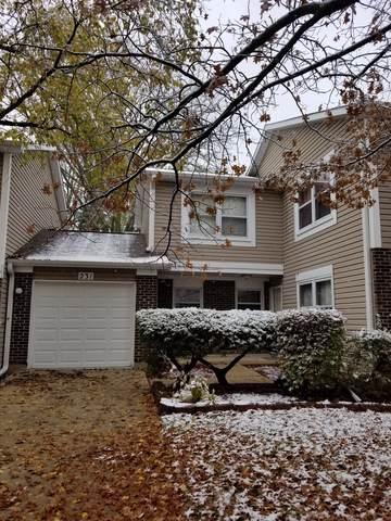 231 Tamarack Drive, Bloomingdale, IL 60108 (MLS #10574264) :: Ani Real Estate