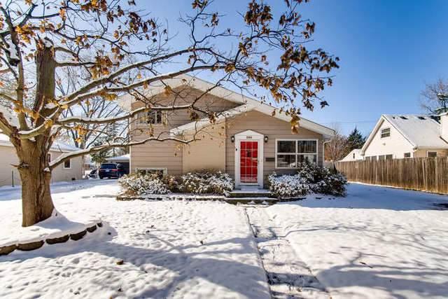 380 N Lincoln Avenue, Villa Park, IL 60181 (MLS #10574378) :: Ani Real Estate