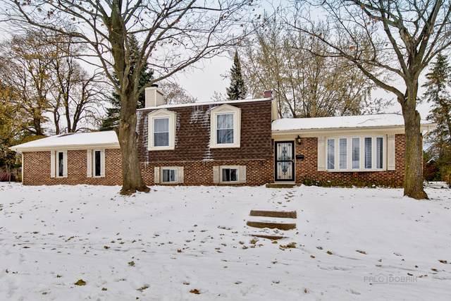 227 W Park Street, Mundelein, IL 60060 (MLS #10574485) :: Property Consultants Realty