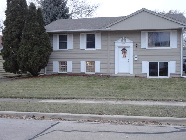 133 Ambassador Avenue, Romeoville, IL 60446 (MLS #10574501) :: The Wexler Group at Keller Williams Preferred Realty