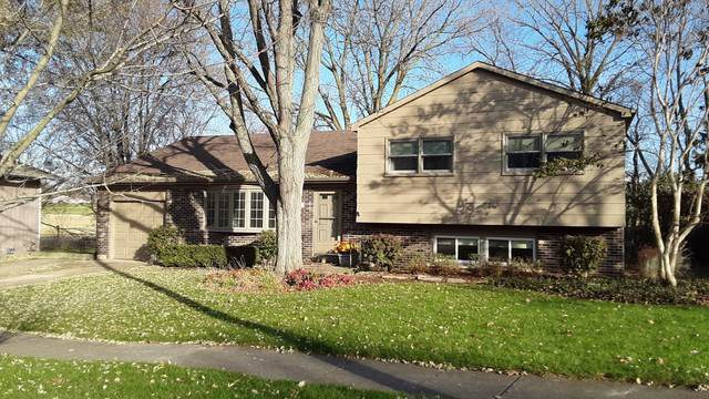 501 Silbury Court, Mchenry, IL 60050 (MLS #10574662) :: The Wexler Group at Keller Williams Preferred Realty