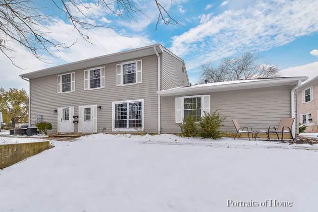 1303 Woodcutter Lane C, Wheaton, IL 60189 (MLS #10574855) :: Ryan Dallas Real Estate